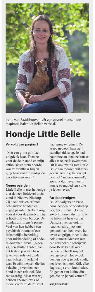 article-newspaper-hollands-kroon-little-belle-20102016-2-pdf-kopie